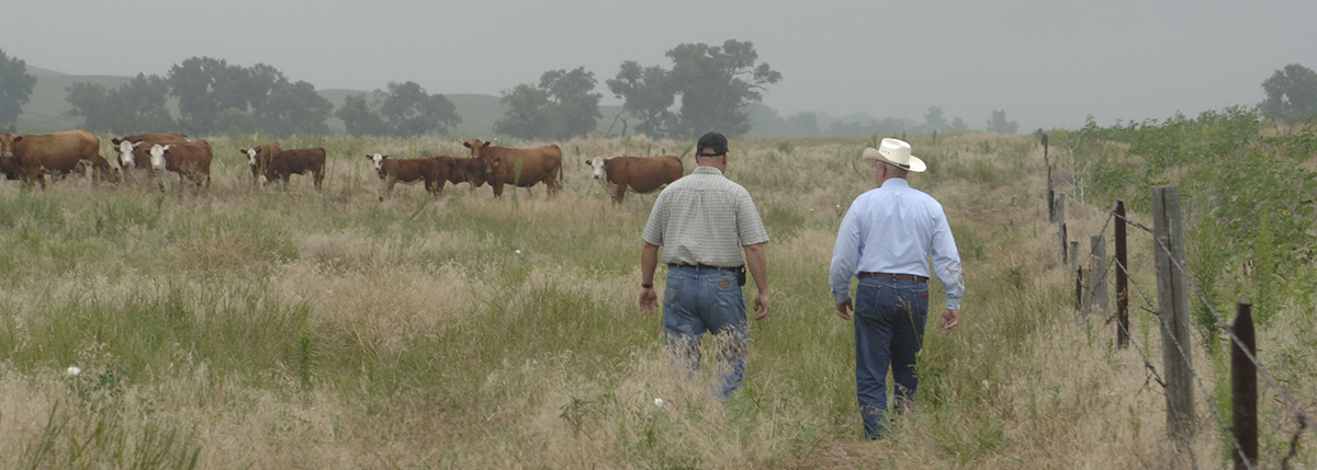 Extension agent with rancher in field